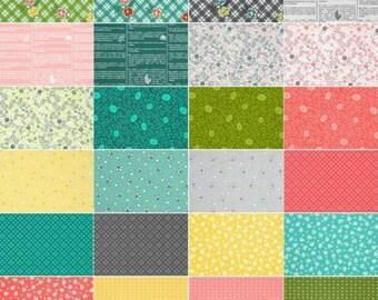 RJR Brenda Ratliff One Room Schoolhouse cotton quilting fabric fat eighth bundle 24 prints OOP VHTF