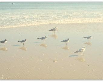 Seagull Photography, Canvas Wrap, Nursery Decor, Bath, Aqua Blue, Large Coastal Decor, Ocean Photography, Beach Photo, Living Room, Bedroom