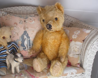 Old English teddy bear