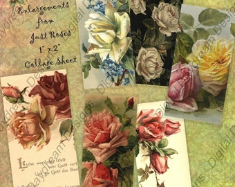 Instant Download Printable Collage Sheet 1 x 2 size - Just Roses