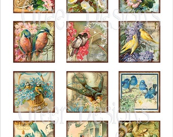 24 Images Birds and Nests 2 by 2 inches Square for Pendants Paper crafts Scrapbook Instant Digital Download Printable Jewelry
