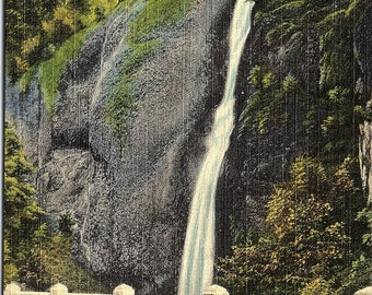 Horsetail Falls, Oregon, Columbia River Highway - Vintage Postcard - Postcard - Unused (S)