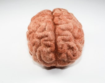 Needle Felted Brain - Pink Wool