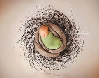 spring nest,possing nest,willow branches,photo props,possing props