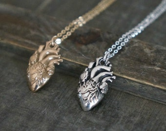 Anatomical Heart Necklace // Silver or Gold Realistic Heart Necklace / Valentines Day Gift for Her