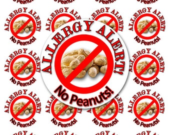 24 No Peanuts Sticker, Allergy Sticker, Peanut Allergy Sticker, Allergy Alert Sticker, Personalized Allergy Sticker SET OF 24 (152)