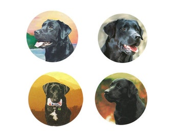 Labrador Retriever Magnets-Black:  4 Cool Black Labs for your home, your collection,  or to give as a unique gift