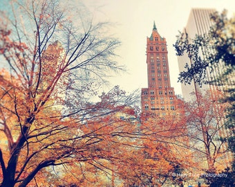 NYC Photography Print, New York Photo, Central Park, Autumn Decor, Fall Photography, Wall Art, New York City Print, Wall Decor