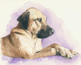 Pet portrait. Custom pet. Custom pet portrait. Dog art. Custom illustration. Pet portrait commission