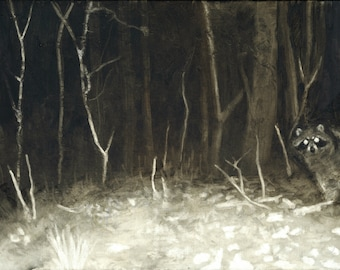 Night Raccoon Print