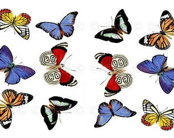 Butterfly Water-Slide Decals, Butterfly Wedding and Party Decals, Decorate Flame-less Candles, Soap, Glass, Home Decor, Furniture-DS101