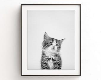 Cat print modern minimal black and white nursery print kitten instant download printable wall art photo nursery wall art decor animal print