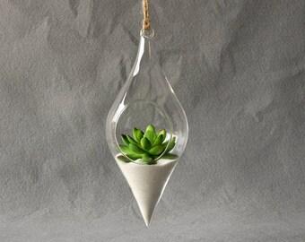 Hanging Glass Terrarium