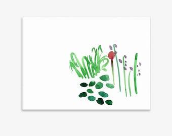 Unrecognisable Parts Of Our Garden 17, print on fine art paper