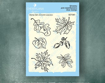 "Autumn Fall Leaves Set of Stamps 4x6"" Clear Photopolymer Rubber Stamps"
