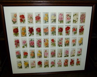 Beautiful Framed Roses Cigarette Cards - 1926 - Complete Set