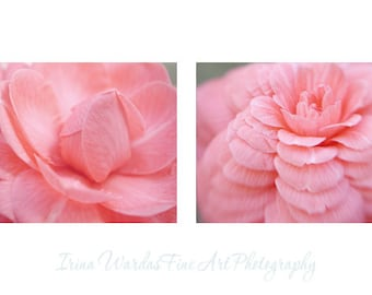 Modern art, large flower photography, pastel bedroom decor, pink wall art set 2 floral art prints 12x16, Camellia flower, gallery wall set,