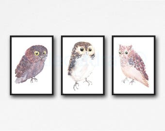 Owl Print Owl Watercolor Painting Print Set Of 3 Bird Print Wall Art Home Decor Bedroom Wall Decor Bird Lover Gift Unframed