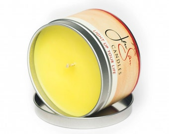Paradise Travel Tin Tropical Soy Candle -  8 oz