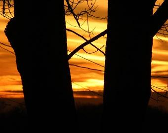 Sunset, X marks the spot