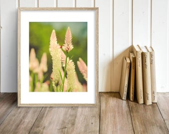Floral Art - Flower Photography - Pastel Pink - Green - Summer Decor - Bloom - Macro - Floral Print - Wall Art - Farmhouse Wall Art