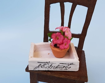 Mini box with Geraniums