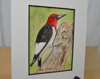 Original ACEO Watercolor Painting - Red Headed Woodpecker - Pen and Ink Art