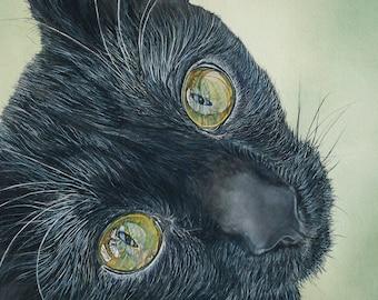 Black cat - Print of Original cat watercolor 5x7