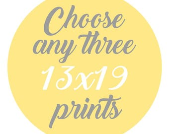 SALE - Mix and Match - Create Your Own Set - Choose Any Three 13x19 Inch Prints for 60 Dollars - You Choose The Prints and Colors