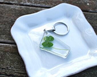 Four Leaf Clover clear resin keychain/ key holder/ charm - real botanical key chaim