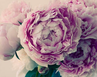 Peony Photo, Fine Art Print, Pink Flower Photography, French Country Decor, Peony Art