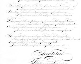 Custom       Calligraphy Letter : Handwritten for Proposal, Vows, Love Letters