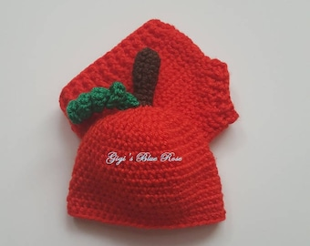 Micro Preemie Crochet Baby Pumpkin Hat and Diaper Set/Photo Prop/Ready to Ship