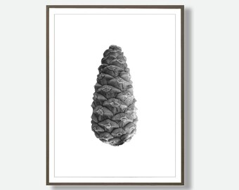 Pinecone Prints, Pinecone Poster Art, Downloadable Pinecone, Minimalist Botanical Tree, Minimalist Cone Print, Instant Download Cone,