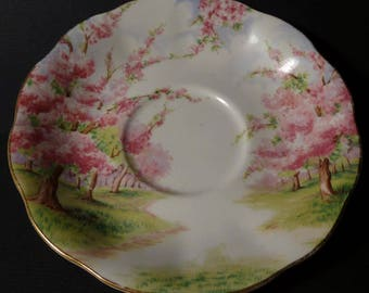 Royal Albert - Blossom Time Saucer