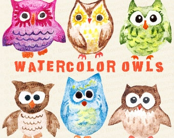 Owl clipart watercolor owls clipart digital owl clip art cute owls sweet whimsical pink blue purple green color owl instant download
