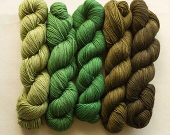 Forest  Angus Gradient Yarn Set 5 x 50g SW Merino and Nylon