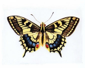 Butterfly Vintage Image.  Digital Download.  Image Transfer, Nature, Wings, Mixed media, Insect, Swallowtail, Science, Instant, #12PS