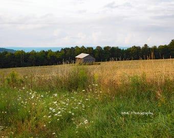Barn Views
