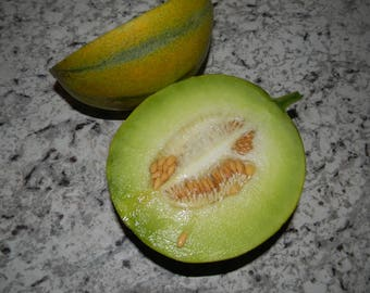 Non GMO Rare Israel Ha'Ogen Melon Seeds QTY. 25 Open Pollinated Heirloom