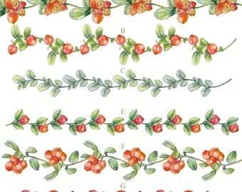 6 borders berries, hand painted clipart's, watercolor borders, watercolor clipart