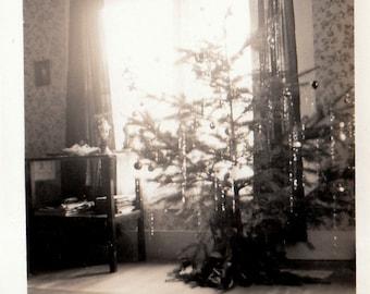 Original Vintage Interior Photograph Snapshot Christmas Tree 1930s-40s