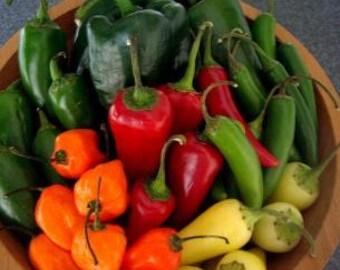 Jalapeno Pepper Jelly Hot Appetizer  Homemade Organic