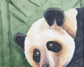 aceo Panda Limited to 8