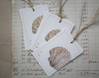 6 Scallop Shell Gift Tags, Set of 6, Beach Tags, on Recycled Cream Flecked Cardstock with Jute String