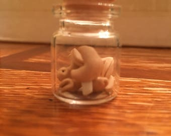 Miniature Jar- Fortune Cookies