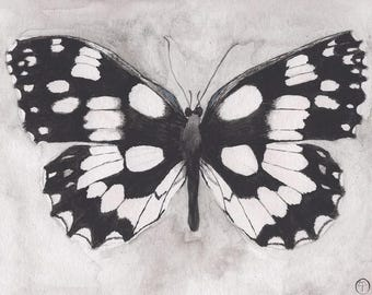 Black and White Butterfly, butterfly watercolor, butterfly print, wall art, gift for her