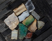 lot of vintage minerals cut eleven cut slices malachite, petrified dinosaur bone, petrified wood, quartz, agate, gold specked red jasper,