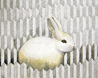 White Rabbit - Chloe - Print of original illustration