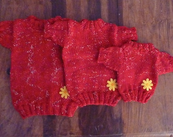Dog  red sweater hand kniting  wool